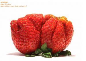 Strawberry by Dana Gunders