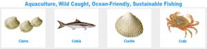 Aquaculture Banner