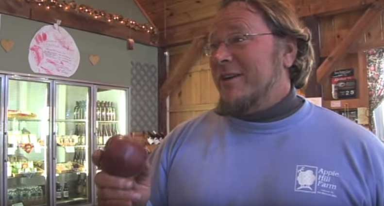 Apple Varieties from New England