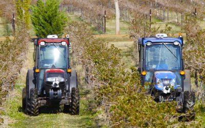 High-tech Tools in the Vineyard (Podcast)