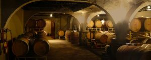 Seasonally Cellared Cellar