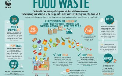 How Much Food Do We Waste? Probably More Than You Think!