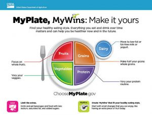 USDA my plate infographic